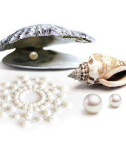 Lichaamsjuwelen en stickers
